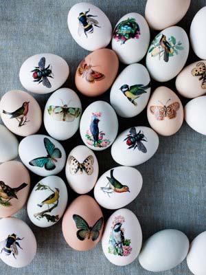 Exquisite Easter Eggs-Jodi Kahn