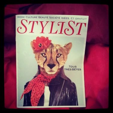 stylist-o-lit