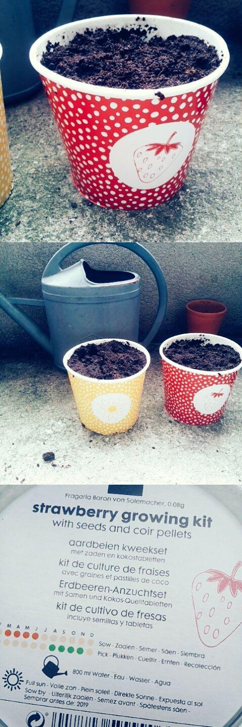 kit jardinage-hema