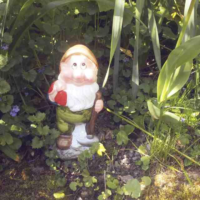 nain-jardin